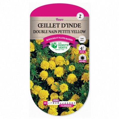 Graines Oeillet D'Inde Double Nain Yellow - Les Doigts Verts