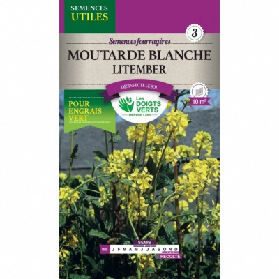 Graines Moutarde Blanche Litember, Les Doigts Verts