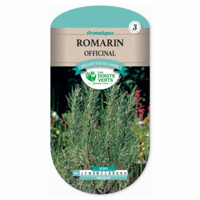 Graines Romarin Officinal - Les Doigts Verts