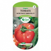Graines Tomate Montfavet Hyb F1, Les Doigts Verts