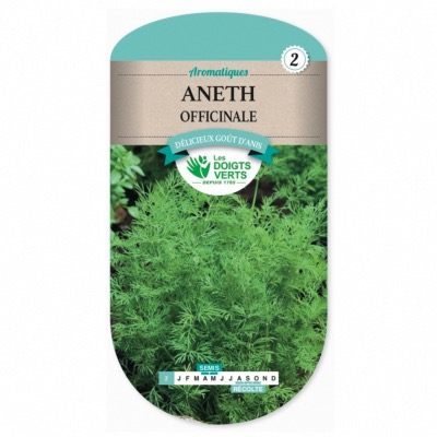 Graines Aneth Officinale - Les Doigts Verts