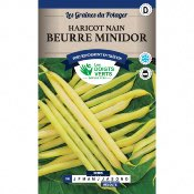 Graines Haricot Nain Beurre Minidor 50gr - Les doigts Verts