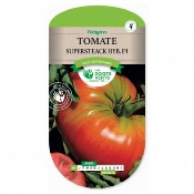 Graines Tomate Supersteack Hyb F1, Les Doigts Verts